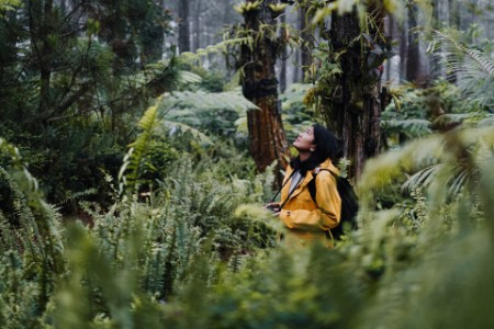 young woman explore forest