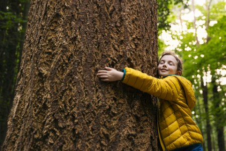 Young girl hugging a big tree trunk