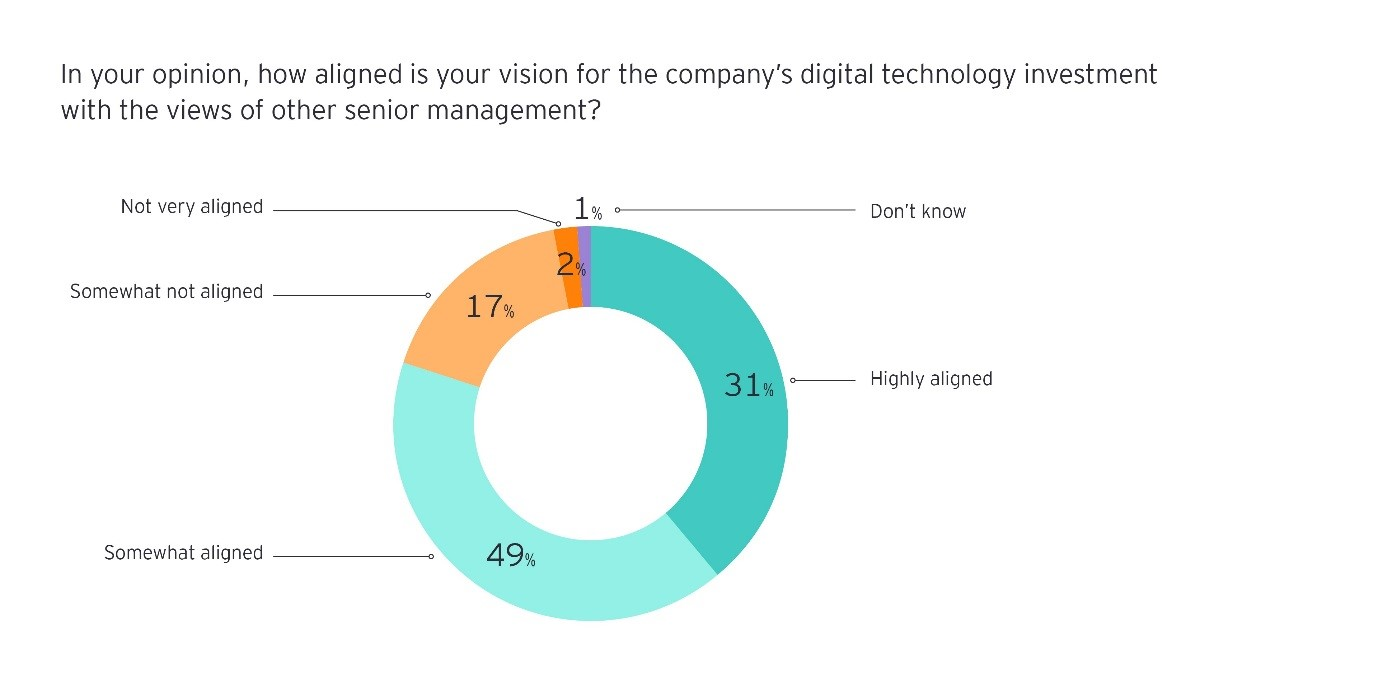 in your opinion how aligned is your vision for the companys digital technology investment with the views of the other senior management