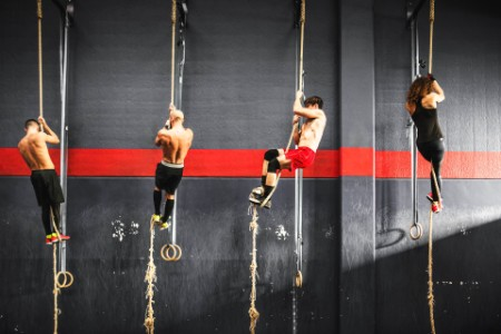 group athletes climbing rope gym