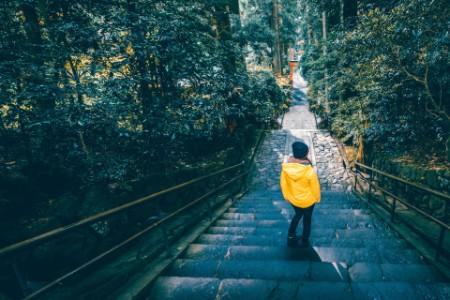 Tourist exploring a woodland in hakone japan
