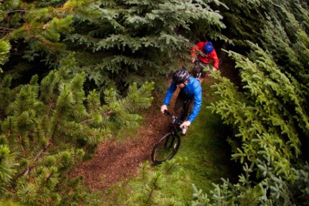 Twee mountainbikers op onverhard terrein