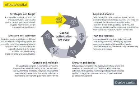 EY COInS lifecycle graphic