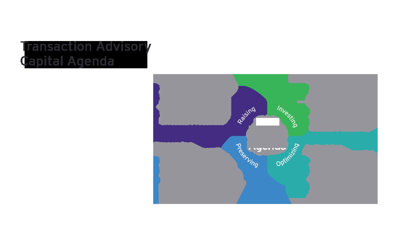 Transaction Advisory Capital Agenda