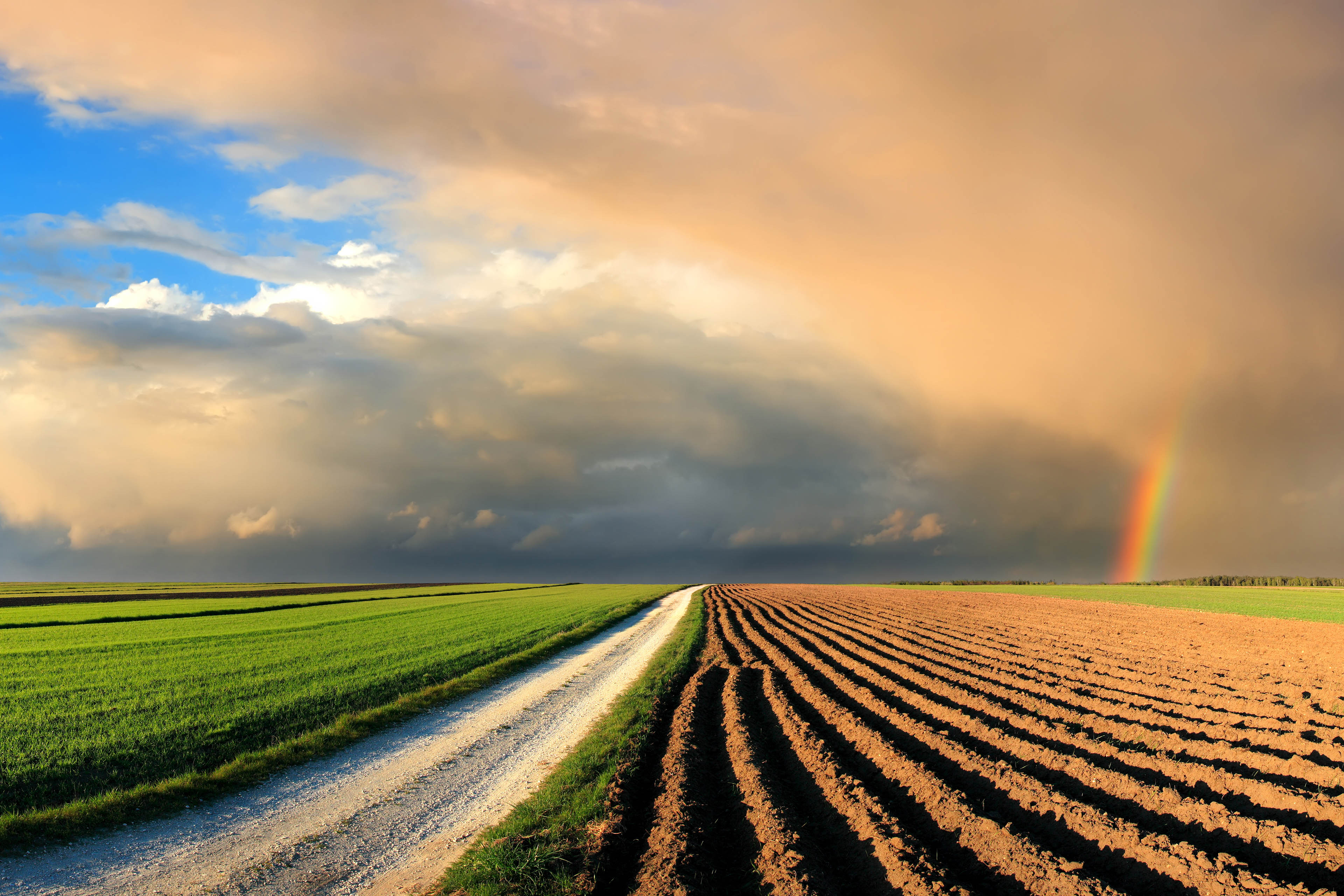 fields and rainbow in the sunset sky