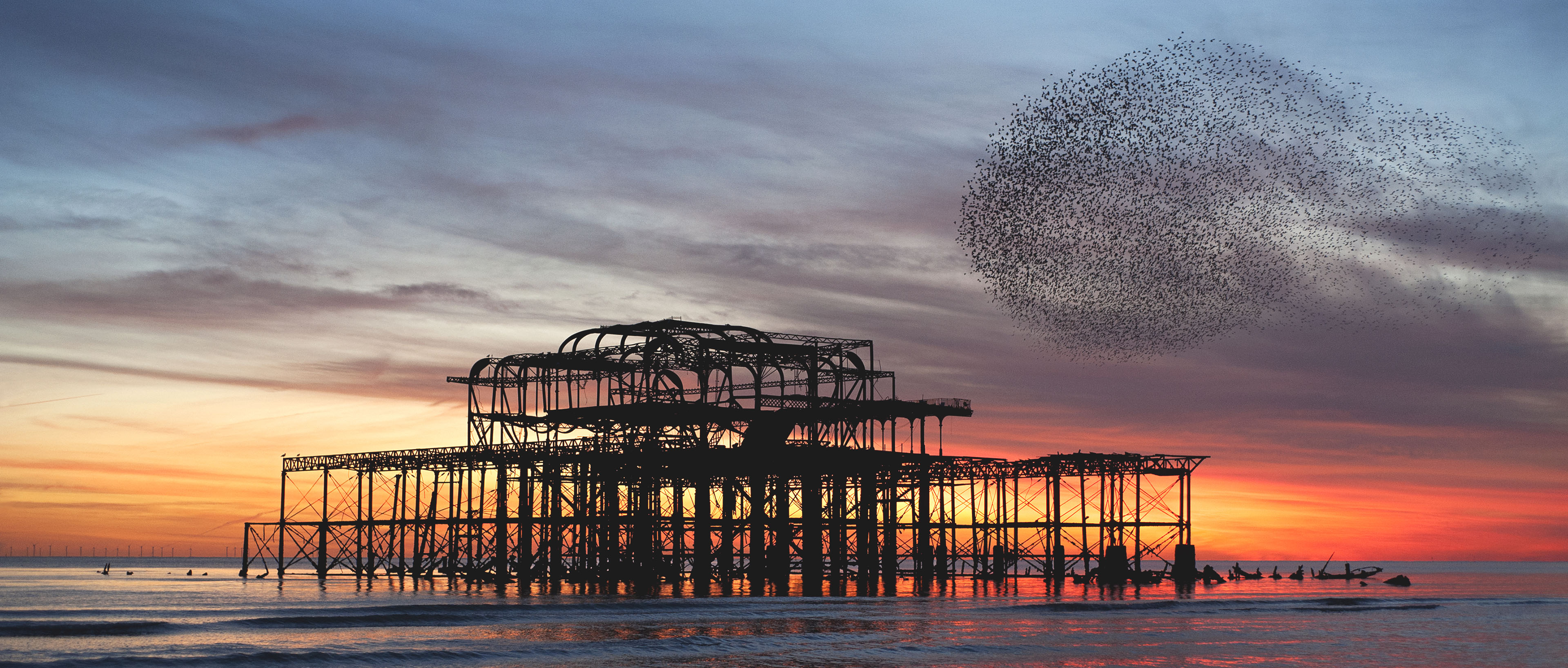 starling murmuration over the ruins of brightons west pier