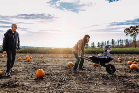 Family enjoying pumpkin patch gainst cloudy sky