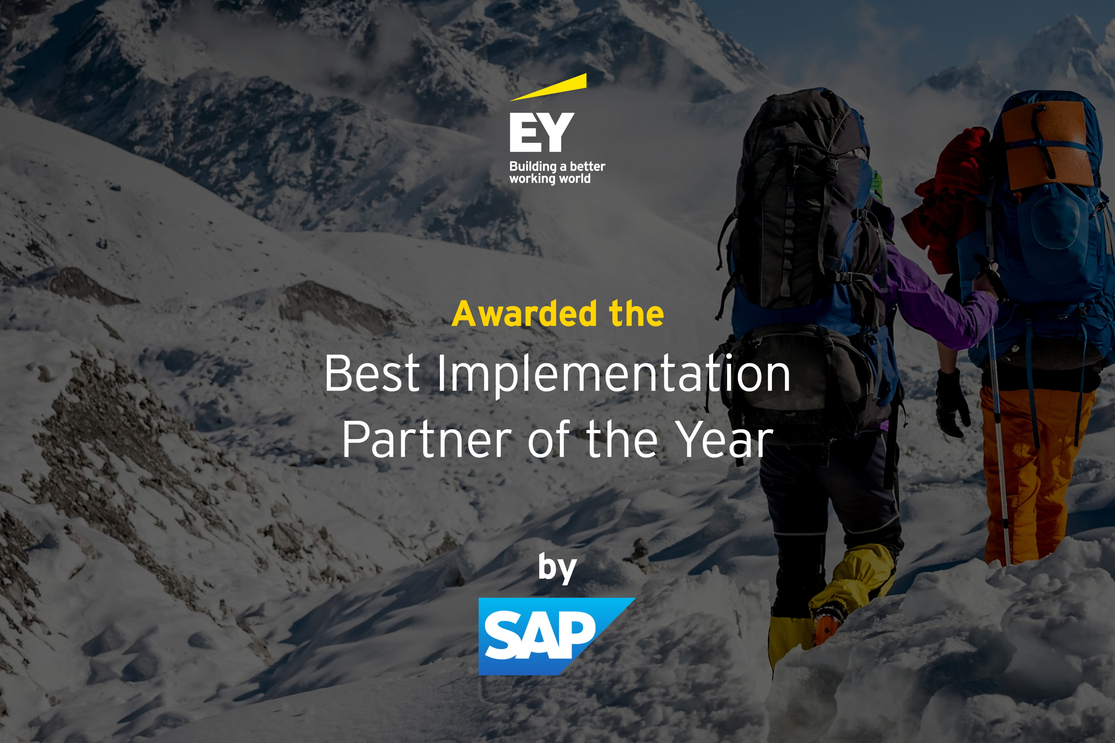 2020 Best Implementation Partner Of the Year