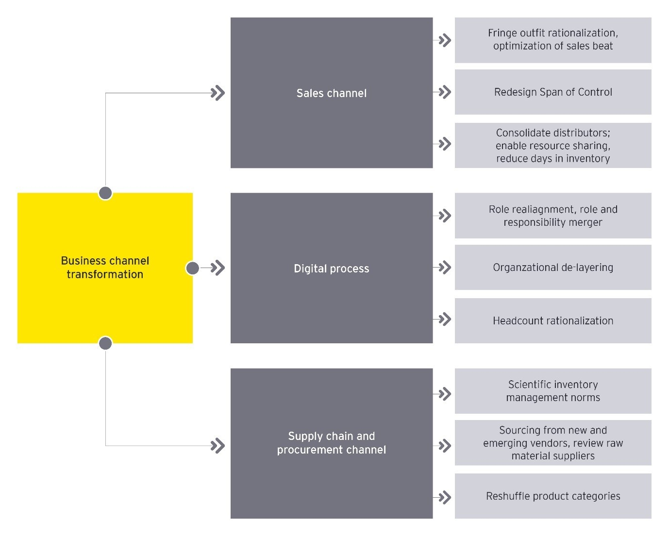 Transformation plan for an Indian CPG company