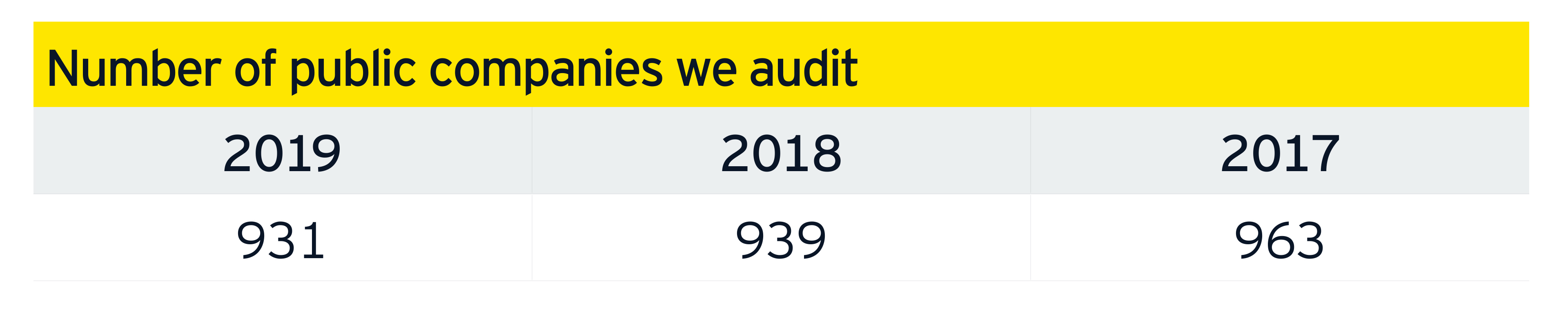 Number of public companies we audit