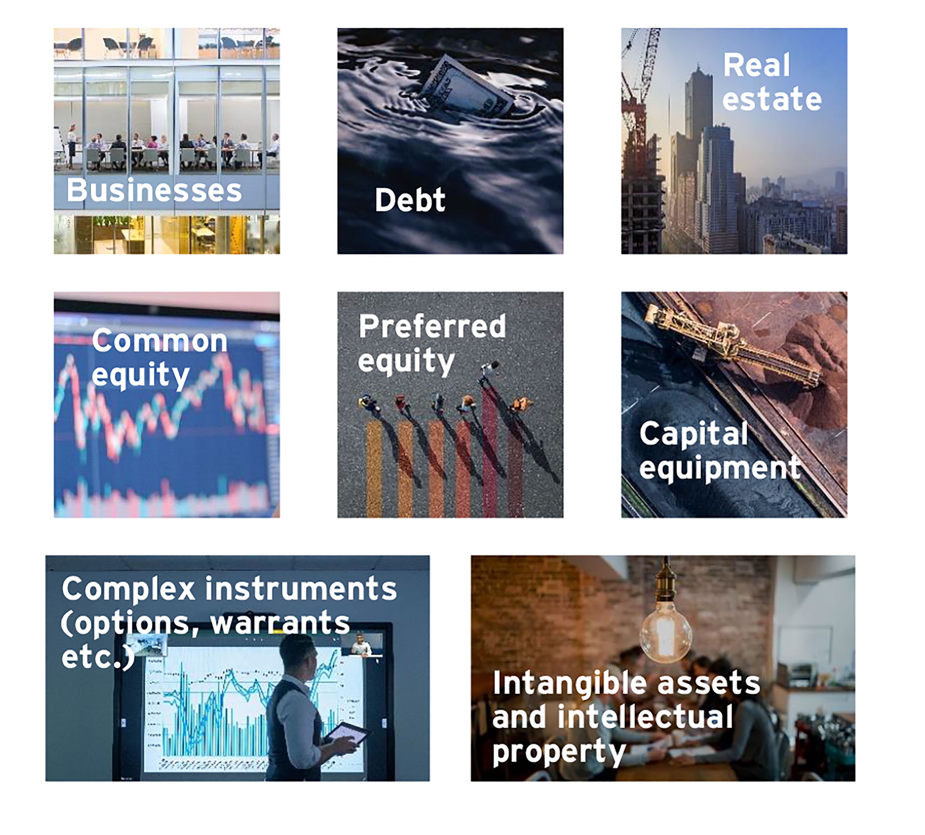EY - Skills to value financial, tangible and intangible assets and intellectual property