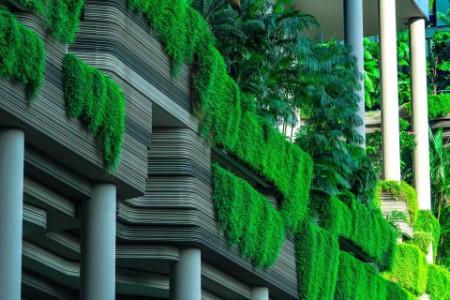 Eco-friendly building with vertical garden