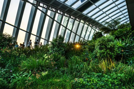 The sky garden