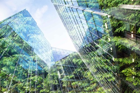 green forest and modern skyscrapers