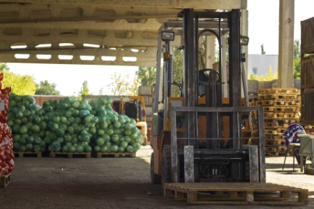 EY - Farm vegetable warehouse ch1