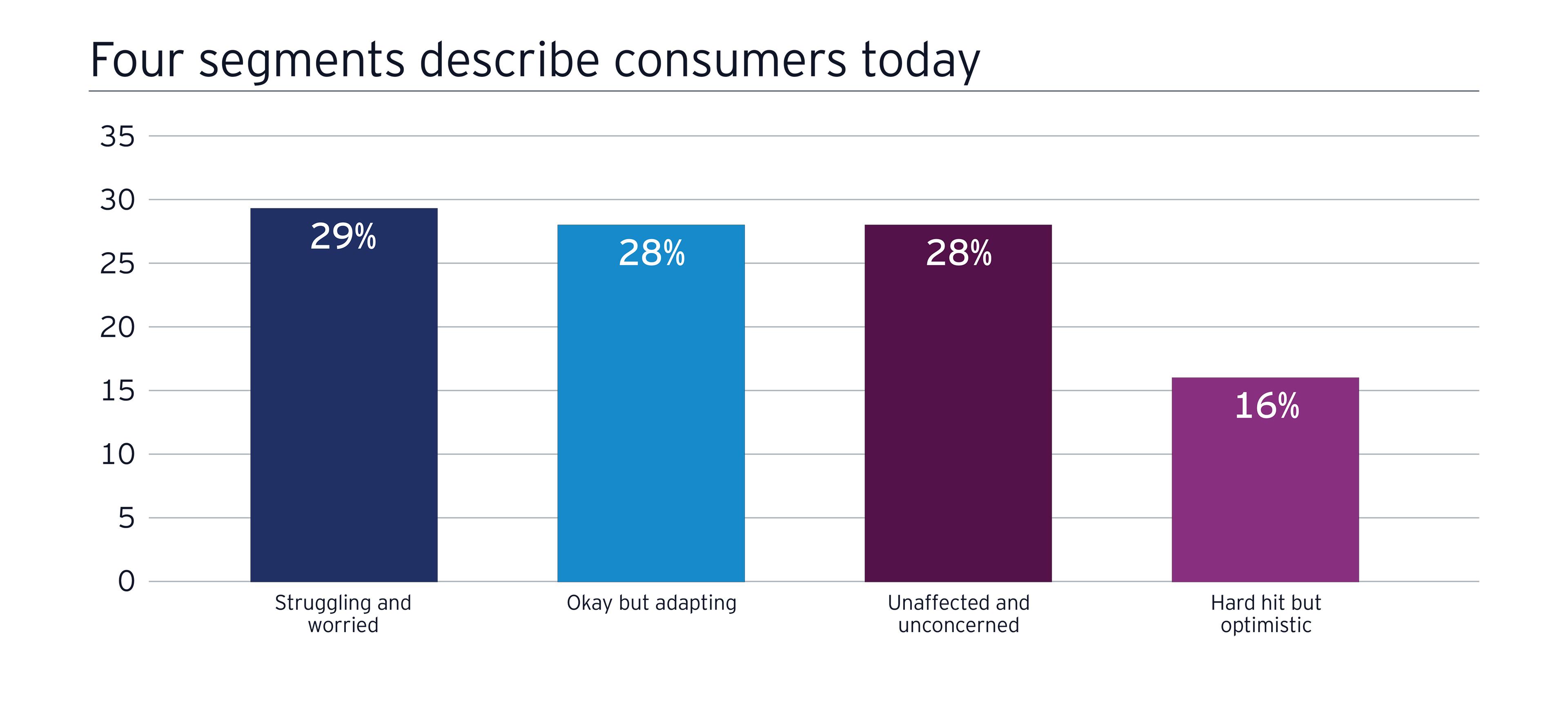 EY - Four segments describe consumers today