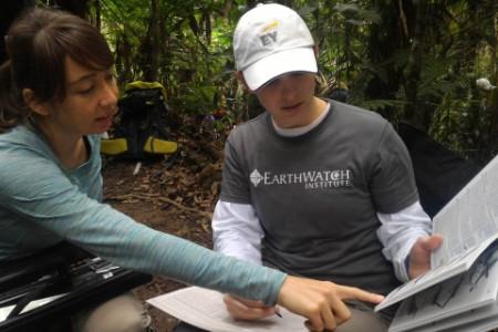 Identifying and measuring birds brazil team