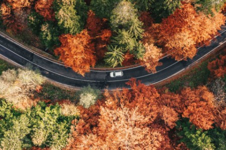 aerial curvy road among fall foliage