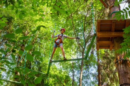 EY - Boy on a ropes course in a treetop adventure park