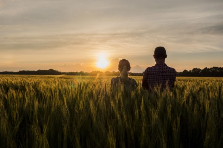 Two farmers looking forward to the sunset over a field