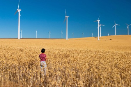EY - Boy standing in a windfarm field