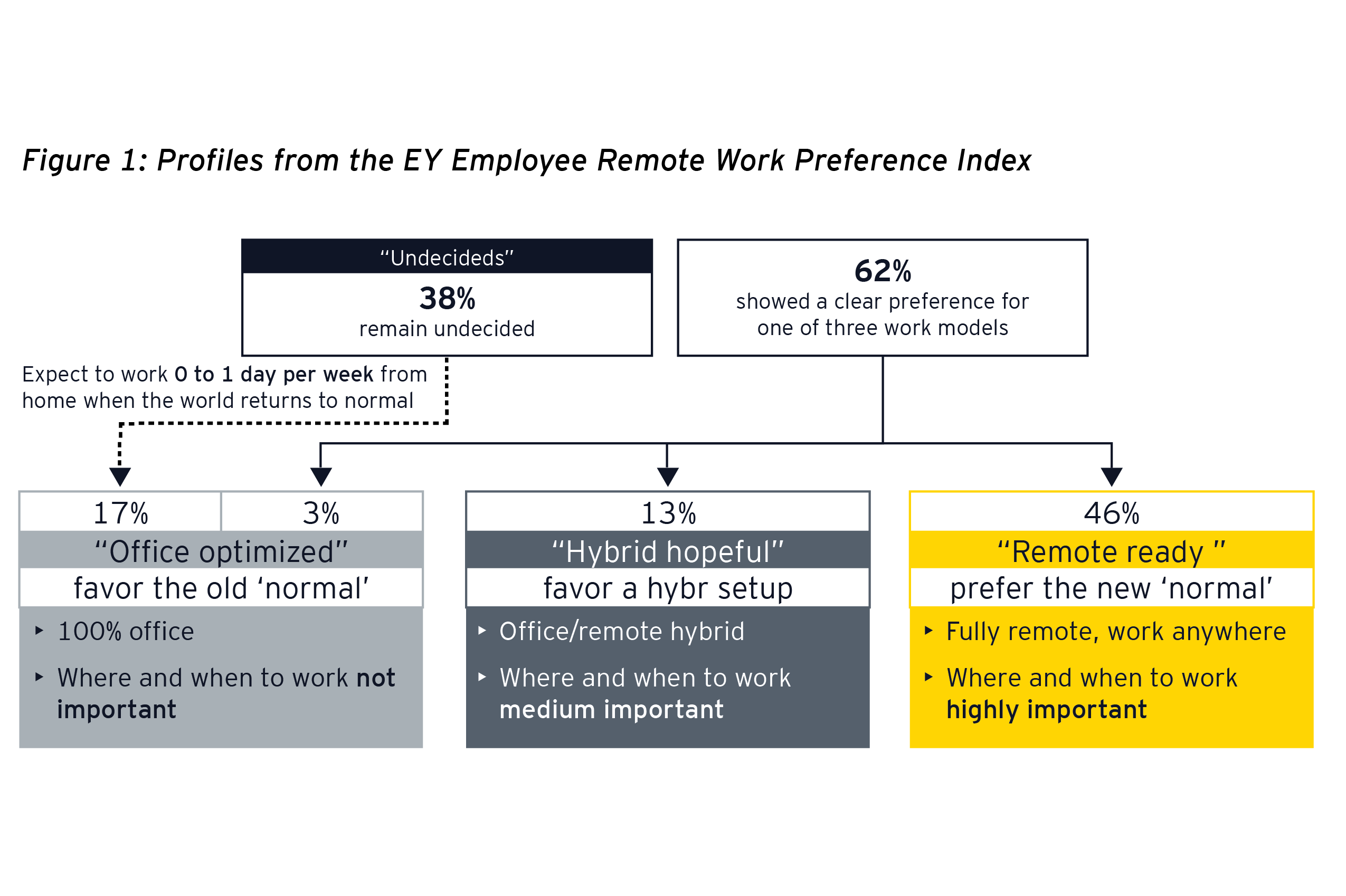 EY - Figure 1: Profiles from the EY Employee Remote Work Preference Index