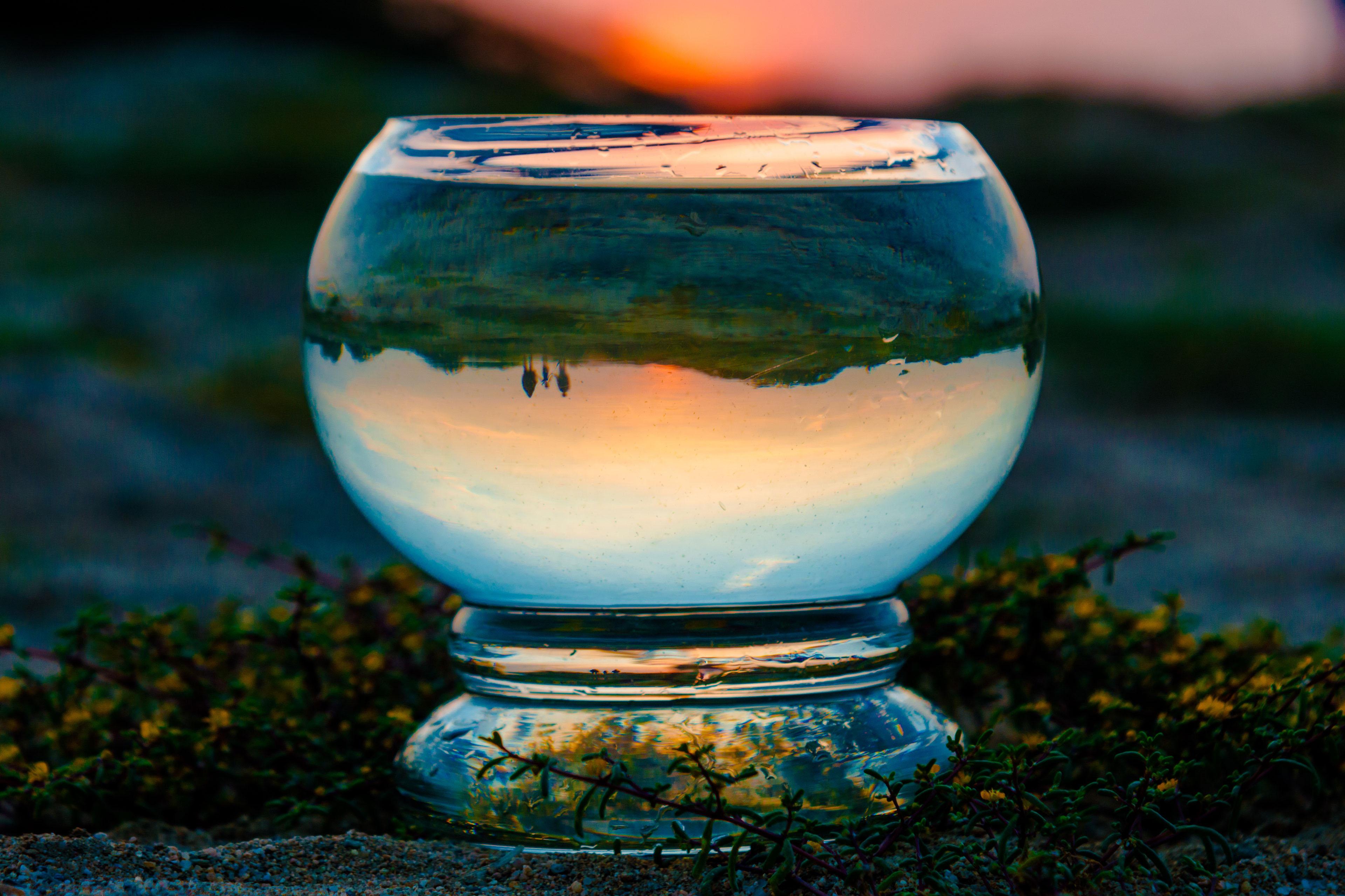Nature view through glass globe