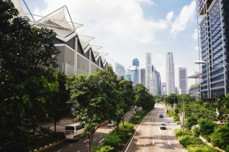 Boulevard con árboles entre edificios