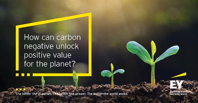 EY anuncia el compromiso de ser carbono negativo en 2021 y carbono neutral en 2025