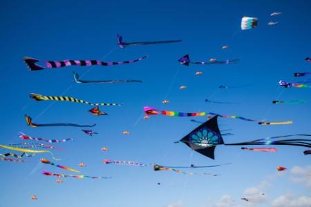 ey-kites-at-long-beach-kite-festival-california-north-america