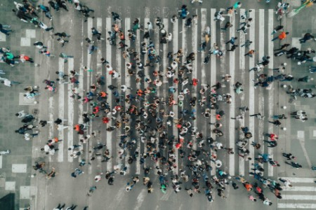 ey-people-zebra-crossing