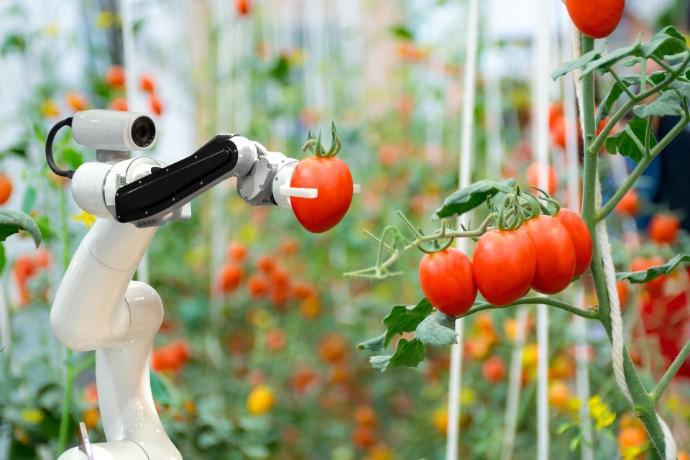 Tendencias de consumo de la industria alimentaria