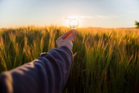 De l'importance d'une relance économique verte
