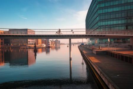 EY - mann som sykler over en bro i København