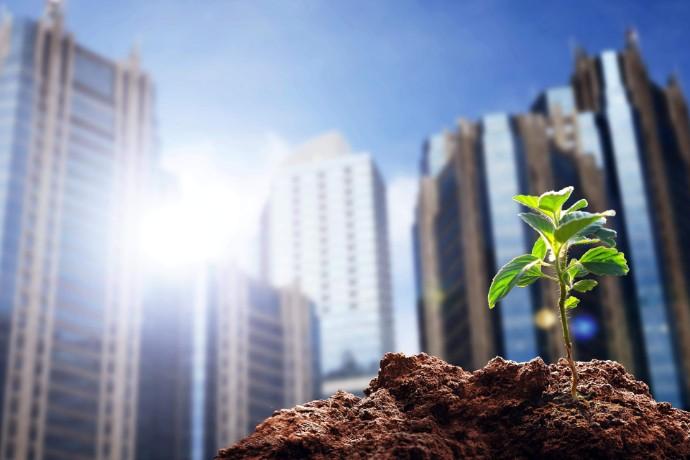 Webcast EY: Co firmy powinny wziąć pod uwagę przy ujawnianiu informacji związanych z klimatem. Wyniki badania EY: Barometr Ujawnień Ryzyka Klimatycznego