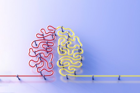 Human brain shaped wire in red and yellow colored