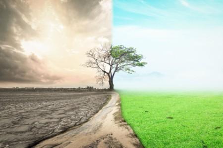 ey hur ska vi finansiera omställningen till ett grönare samhälle