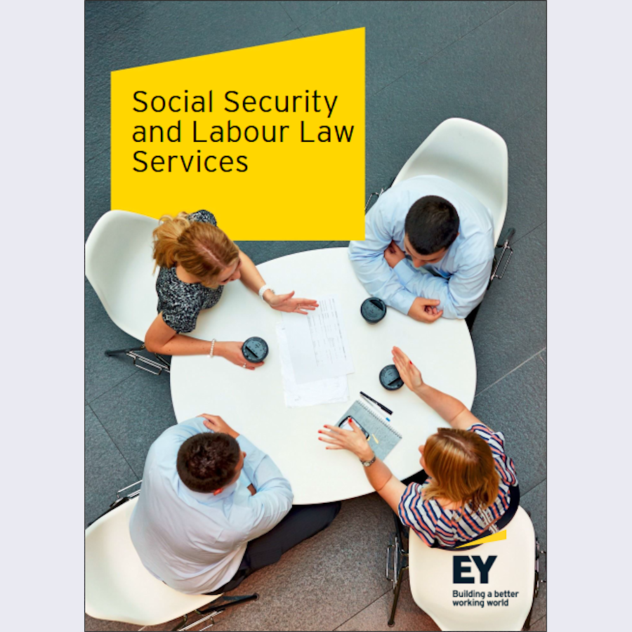 Social Security and Labour Law Services brochure