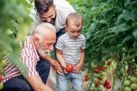 家族三代成員分享甜美果實
